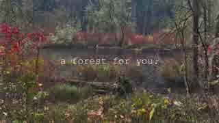 【VOCALOIDオリジナル】a forest for you.【GUMI・AVANNA】