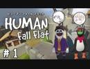【2人実況】HUMAN:Fall Flat#01「夢の世界で運搬したり空き巣したり」