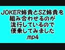 JOKER姉貴とSZ姉貴を組み合わせるのが流行しているので便乗してみました.mp4