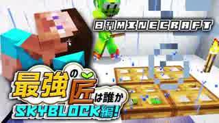 【日刊Minecraft】最強の匠は誰かスカイブロック編!絶望的センス4人衆がカオス実況!♯11【Skyblock3】