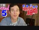 【日本語字幕】医者が見る はたらく細胞 5話 (安定の見てないのにネタバレ) 外国人...