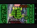 """""""長濱ねる""""と『ペヤング スカルプD』本当に""""1分で""""新SHOW品!!! 劇団KOA'Sの """"分割""""生放送 第125回 12月04日(火曜日)"""