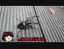 【ゆっくり車載】子連れライダーの旅行記【NM4-02】その11