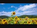 【金管5重奏】世界に一つだけの花/SMAP