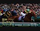 【中央競馬】プロ馬券師よっさんの第70回阪神ジュベナイルフィリーズ(GI)