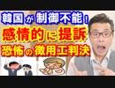 韓国が恐怖の徴用工問題で感情的に提訴した結果、日本との経済関係がヤバい!衝撃の理由と真相に世界は驚愕!海外の反応『不可能な崩壊状態だ』【KAZUMA Channel】