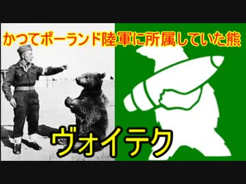 "【 Slowly history commentary 】 Historical bear ""Voytech"""