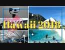 ハワイ2018/第0回・旅程/手ぶらスタビライザーの制作過程
