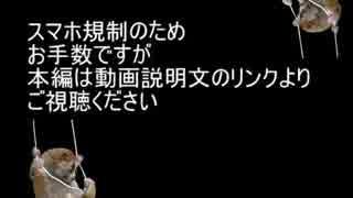 ガイブレ合作~スマホ規制回避~