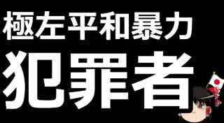 【ゆっくり保守】横行する沖縄活動家による犯罪。その連中のデモに参加する県知事。