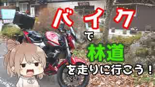 【秩父】ささらん車載でpart22 バイクで林