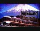 Fujikawans