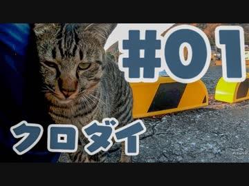 【釣り】クロダイ貰って猫と遊ぶだけ #1【料理】