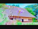 心温まる、癒しのハープ音楽【作業用・睡眠用BGM】