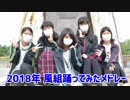 2018年踊ってみたメドレー【風組】