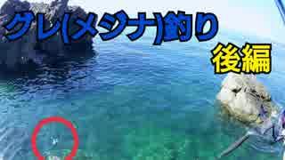 #3【海釣り】元旦からグレ(メジナ)釣り【磯フカセ】~後編~