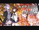 第76位:カメラぶらぶらふたり旅~秋の京都、あと肉フェス【結月ゆかり】