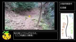 【RTA】石澄の滝攻略 00:14:16【リアル滝アタック】