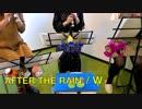 AFTRER THE RAIN【315プロ演奏企画】