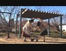 【卯月と翠月】 45秒 【踊ってみた】