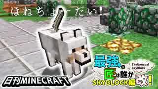【日刊Minecraft】最強の匠は誰かスカイブロック編改!絶望的センス4人衆がカオス実況!#14【TheUnusualSkyBlock】