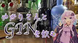 【カクテル】ゆかりさんとジンを飲む