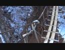 低山を歩こう 毛無山-十二ヶ岳縦走 20190113 part2