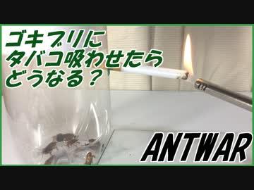 ゴキブリにタバコの煙を吸わせたら想像以上の結果になった。