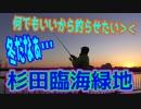 釣り動画ロマンを求めて 221釣目(杉田臨海緑地)