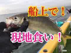 新年初釣り後半戦!LTアジ船釣りで船上現地食い!【もっち釣動組合♯42後編】