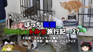 【ゆっくり】韓国トルコ旅行記 27 猫の楽園とトルコアイス