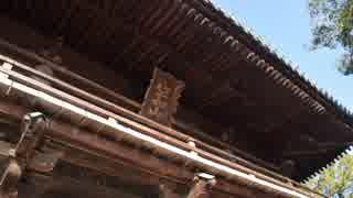 【ゆっくり】徒歩で日本一周part509【吉野川→鳴門】