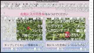 2019-01-26 闘会議2019[DAY1]→人工生命観