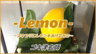 ゴキ津玄師 PV 「Lemon」