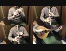 プリコネR「旅の始まり」をアイリッシュ楽器等で演奏してみた