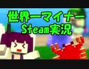 【Steam】世界で一番マイナーなSteamゲー実況&開発 Part1【VO...