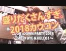 '18.12.31カウコンLV【Met現場レポ】Hello! Project COUNTDOW...
