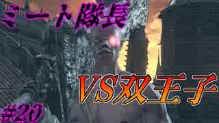 ダークソウル3・終わる世界 #20 ~ソウ