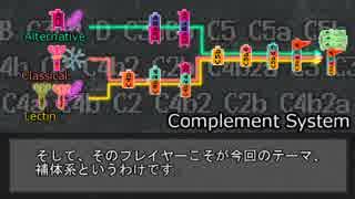 【ゆっくり解説】補体系