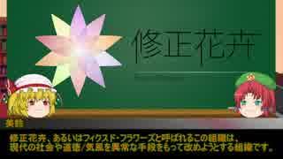 【門番と妹】ゆっくりSCP-CN紹介par14