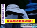【沖縄の声】2月11日は建国記念日/無秩序でやりたい放題の「県民投票」[H31/2/12]