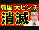 【韓国 速報】2019年 韓国経済消滅の日をシミュレーションしてみた結果がヤバすぎた!史上最悪の通貨危機で大ピンチ!海外の反応『KAZUMA Channel』