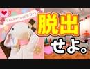 【うさぎ実況】大波乱のバレンタイン!?好きなあの子にピョンっとチョコを届けたい!-その1-
