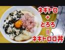 業務スーパー商品でネギトロロ丼□を作る