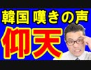 【韓国 速報】韓国議長の次はノーベル賞発言で韓国政府から嘆きの声!安倍首相もビックリ仰天!海外の反応『KAZUMA Channel』