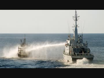 【 North Korean poaching 】 Japanese slumeka is caught by 2000 North Korean illegal fishing boats! The actual situation of poaching by North Korean fishing boats is seriously too much!