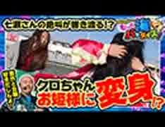 クロちゃんのもっと海パラダイス【#11(4/