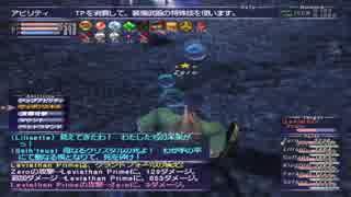 FF11   赤盾でウナギ漁