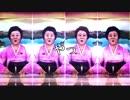 北朝鮮のアナウンサーでRED ZONE