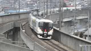 【信州から伊豆へ】E257系ものがたり(E25